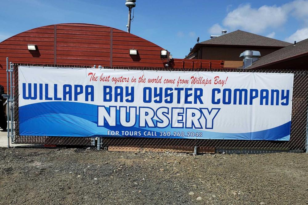Willapa Bay Oyster Co.